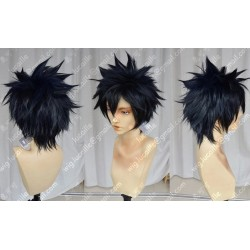 Lucaille® Fairy Tail Cosplay Perücke Gray·Fullbuster schwarze Perücke