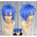 Lucaille® Fairy Tail Cosplay Perücke Jellal Fernandes blaue Perücke