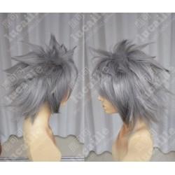 Lucaille® EVA Perücke Cospaly Nagisa Kaworu silbern-graue Perücke